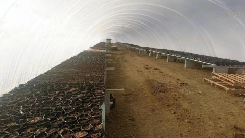 Slika: Rastlinjaki GreenDome, ki omogočajo večjo pridelavo zelenjave na hektar in so energetsko neodvisni. Foto: Duol