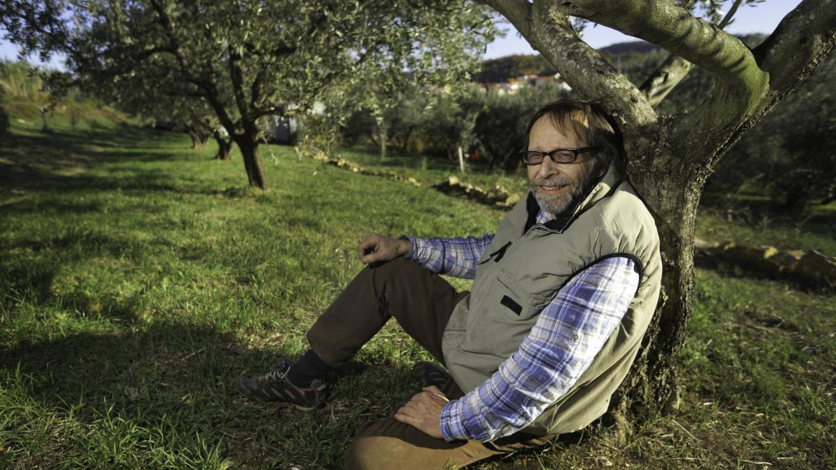 Slika: Vanja Dujc Olivno olje